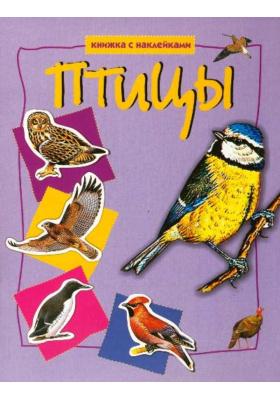 Птицы : Книжка с наклейками