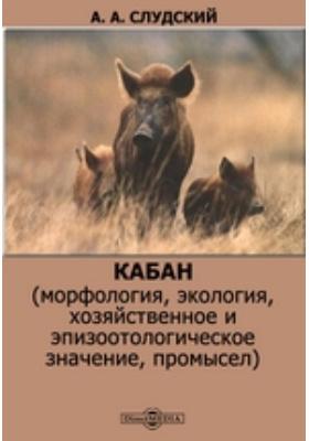 Кабан (морфология, экология, хозяйственное и эпизоотологическое значение, промысел)