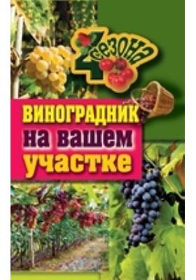 Виноградник на вашем участке