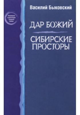 Дар Божий. Сибирские просторы. Т. 1