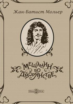 Мещанин во дворянстве: художественная литература