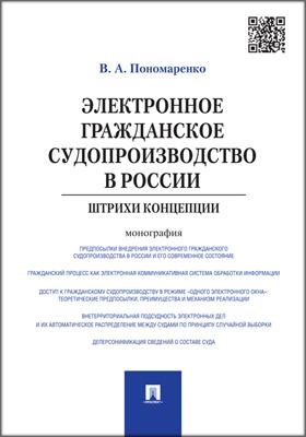 Электронное гражданское судопроизводство в России : штрихи концепции: монография