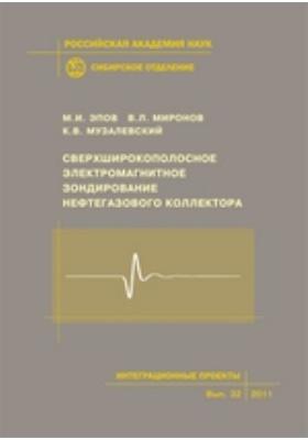 Сверхширокополосное электромагнитное зондирование нефтегазового коллектора: монография