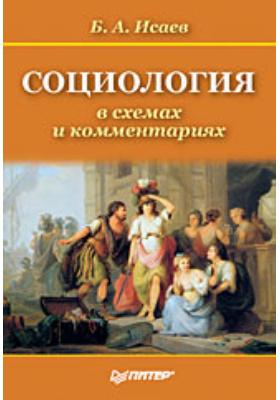 Социология в схемах и комментариях : Учебное пособие