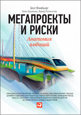 Мегапроекты и риски = Megaprojects and Risk. An Anatomy of Ambition : Анатомия амбиций