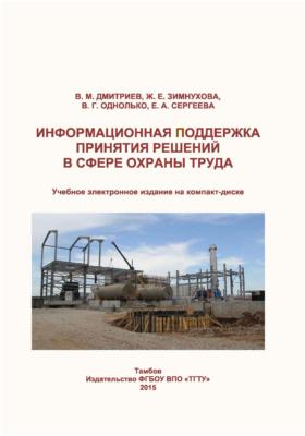 Информационная поддержка принятия решений в сфере охраны труда: учебное пособие