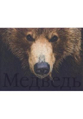 Медведь : Фотоальбом