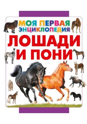 Лошади и пони