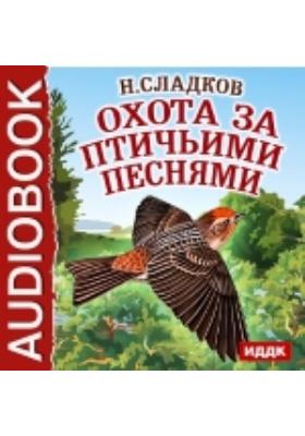 Охота за птичьими песнями