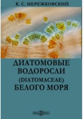 Диатомовые водоросли (Diatomaceae) Белого моря