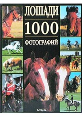 Лошади. 1000 фотографий = Les chevaux en 1000 photos