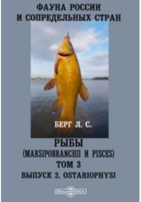 Фауна России и сопредельных стран. Рыбы (Marsipobranchii и Pisces). Ostariophysi. Т. 3, Вып. 2