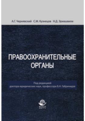 Правоохранительные органы: учебник