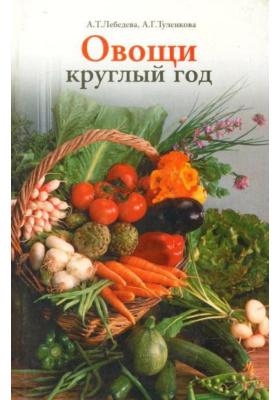 Овощи круглый год : Овощной конвейер