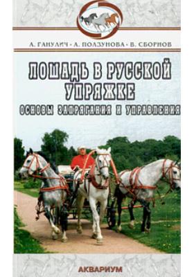Лошадь в русской упряжке. Основы запрягания и управления