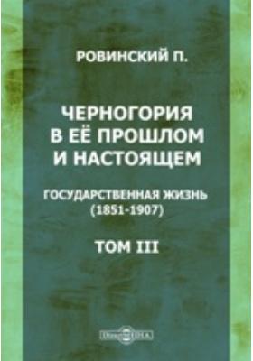 Черногория в ее прошлом и настоящем. Т. 3