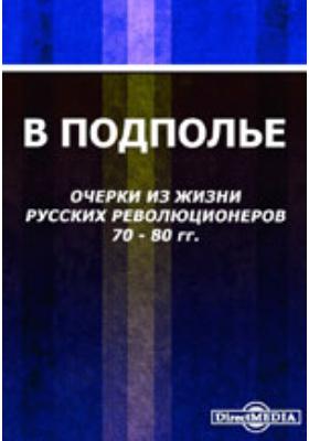 В подполье. Очерки из жизни русских революционеров 1870-1880 гг