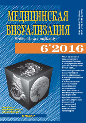 Медицинская визуализация: журнал. 2016. № 6