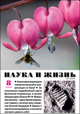 Наука и жизнь: журнал. 2019. № 8