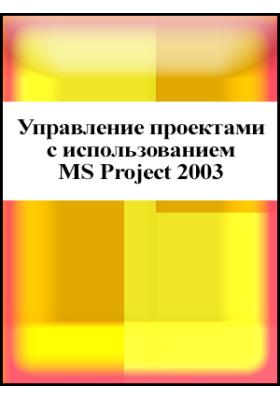 Управление проектами с использованием MS Project 2003