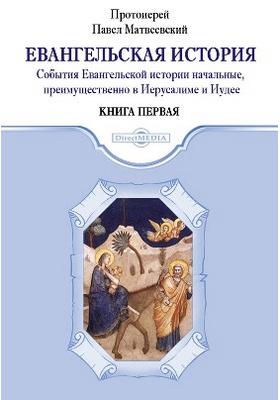 Евангельская история: духовно-просветительское издание. Книга первая. События Евангельской истории начальные, преимущественно в Иерусалиме и Иудее