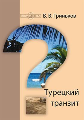Турецкий транзит: роман
