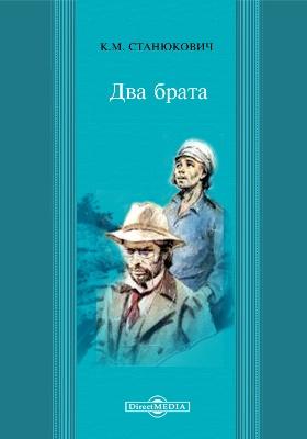 Два брата: художественная литература
