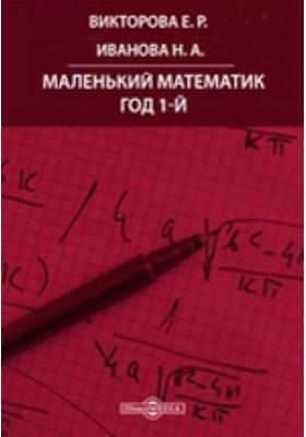 Маленький математик. Год 1-й