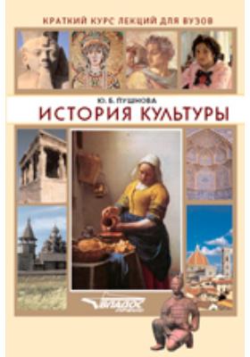 История культуры: краткий курс лекций