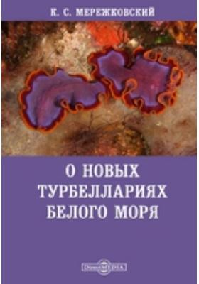 О новых турбеллариях Белого моря