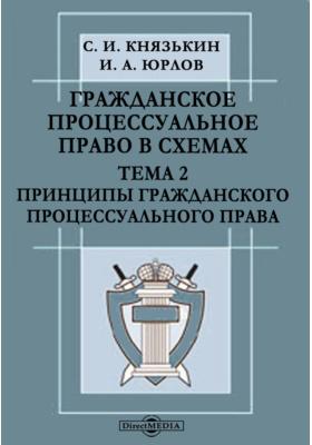 Гражданское процессуальное право в схемах. Тема 2. Принципы гражданского процессуального права