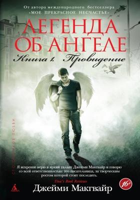 Легенда об ангеле. Кн. 1. Провидение
