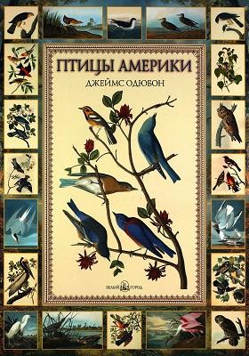 Птицы Америки. Джеймс Одюбон