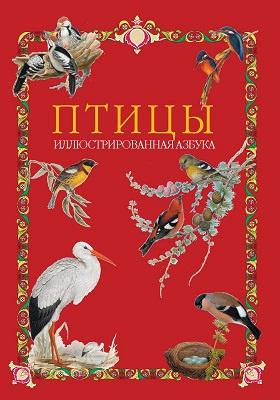 Птицы : иллюстрированная азбука