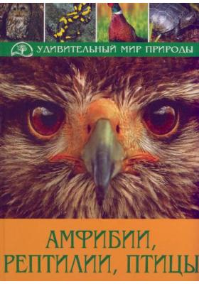 Амфибии, рептилии, птицы