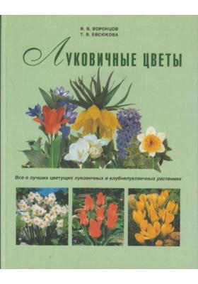 Луковичные цветы : Все о лучших цветущих луковичных и клубнелуковичных растениях