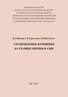 Средневековые кочевники на границе Европы и Азии: монография