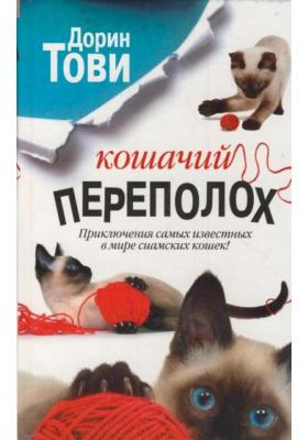 Кошачий переполох = The Coming of Saska. More Cats in the Belfry : Сборник