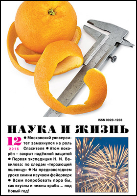 Наука и Жизнь: журнал. 2015. № 12