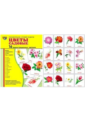 Цветы садовые : Демонстрационные картинки
