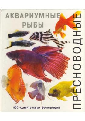 Пресноводные аквариумные рыбы = Focus on Aquarium Fish